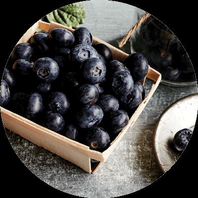Berries - Blueberries