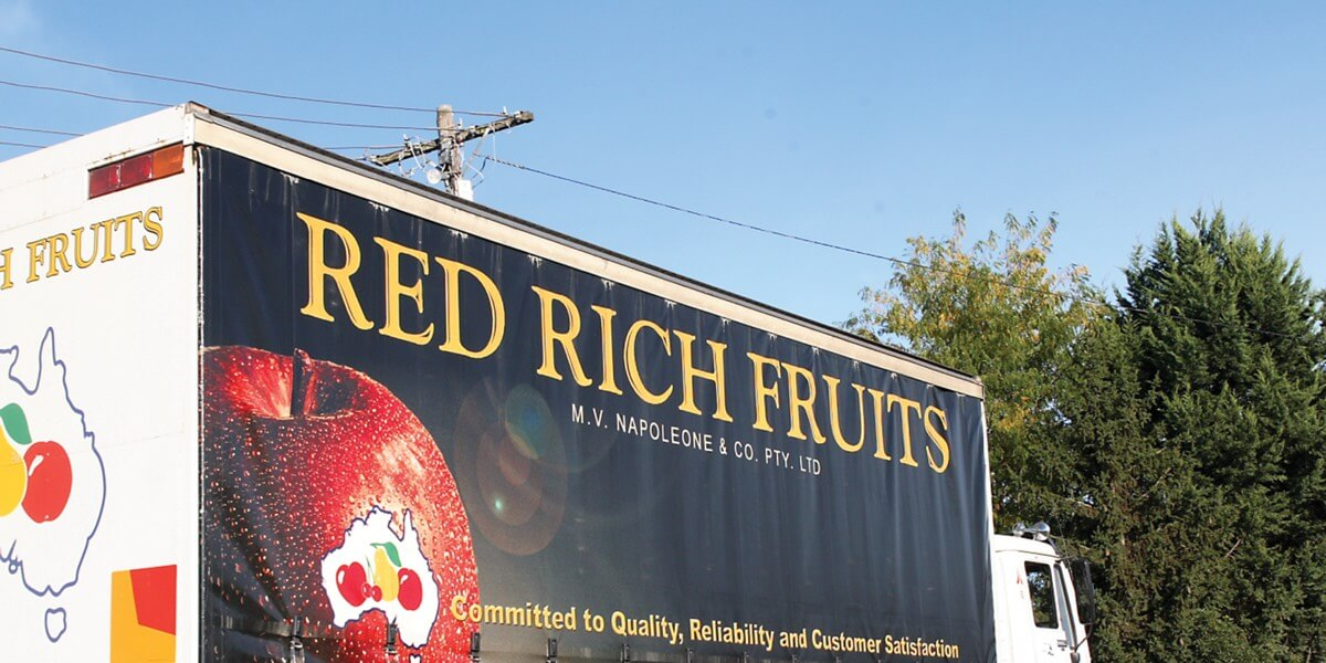 Red Rich Fruits - our business - fresh fruit export, ripening, cold storage, packing, wholesale