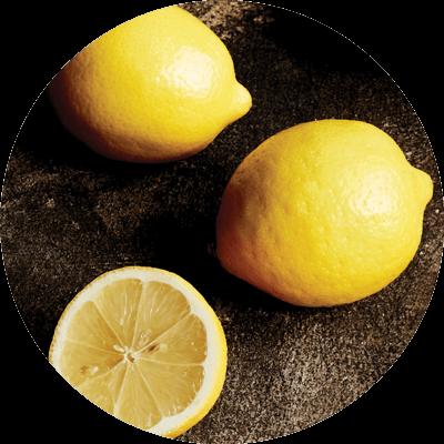 Citrus - Lemons