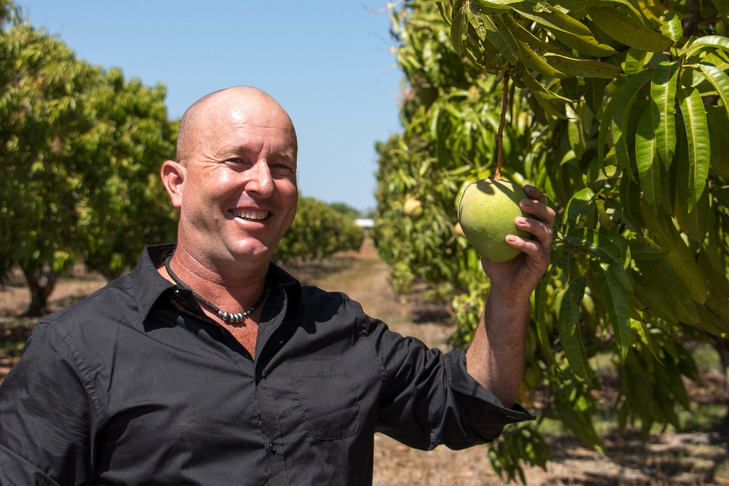 Meet Dave, Head Mango Grower