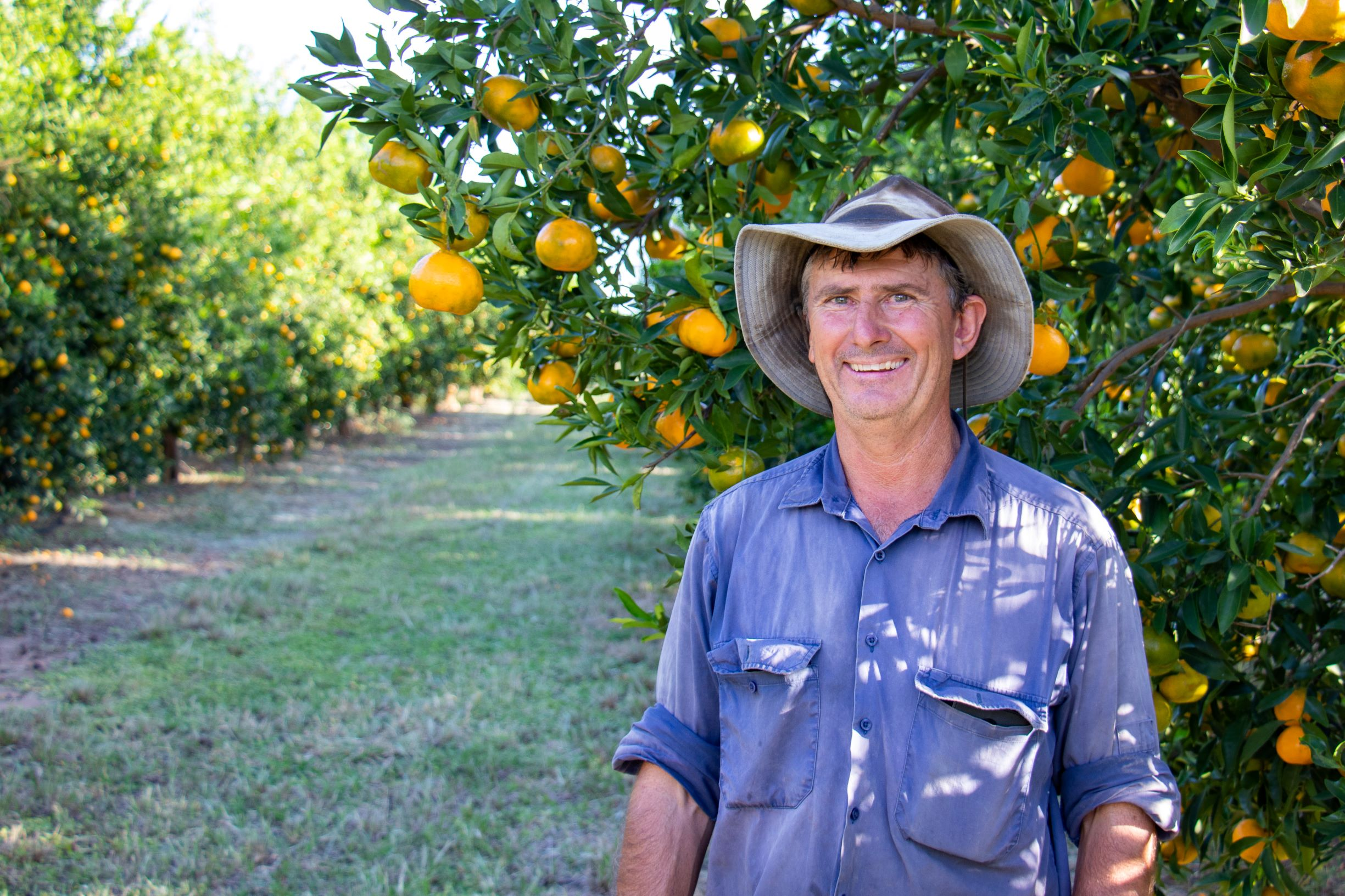 Imperial Mandarin Grower Dennis Smith