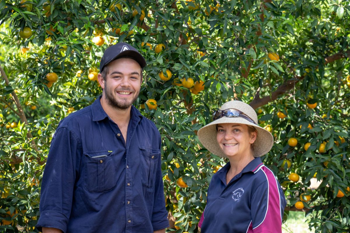 Sue & Tom Jameson of Waitemata Orchards