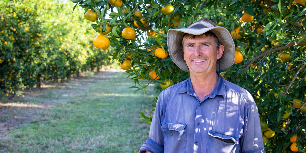 Gayndah Citrus Grower Dennis Smith